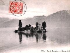 Ile de Salagnon et Dents du Midi