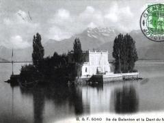 Ile de Salanion et la Dent du Midi