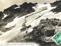 Troupeau de moutons fraversant le Col du Genf