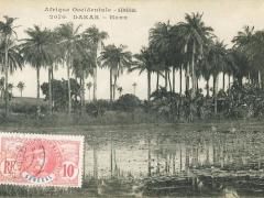 Dakar Hann