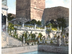 Cordoba Jardin del Alcazar La Torre