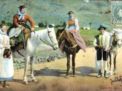 Tenerife Campesinos