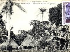 Une Palmeraie Cueillette du vin de palme