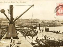 Port Elizabeth Shipping Wool and Skins