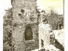 Hrad Choustnik u Sobeslave