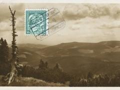 Riesengebirge dürre Rautze am Hang des Brunnberges