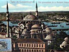 Constantinople Vue panoramique de la Mosquee Suleymanie