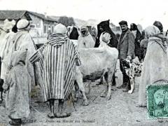 Bizerte Arabes au Marche aux Bestiaux