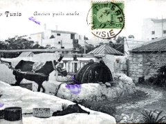 Tunis Ancien puits arabe