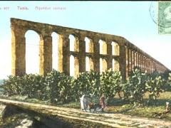 Tunis Aqueduc romain