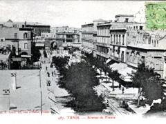 Tunis Avenue de France