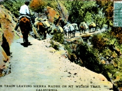 Pack-Train-leaving-Sierra-Madre-on-Mt-Wilson-Trail-California